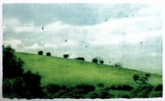 Title: Summer Down Artist: Luella Martin Size: 37 x 22 cm Medium: solar etching on BFK Rives Price £265 framed